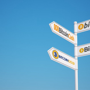 Bitcoin Forks Explained, Which Ones Are Worth Claiming?