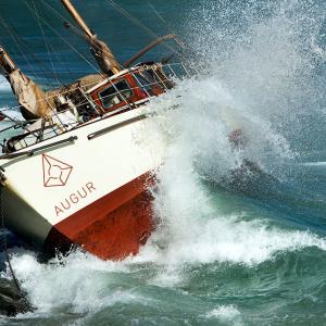 Bitcoin's Rising Tide Lifts Alt Boats