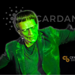 Why Cardano Could Still Fail Despite the Excitement Around Shelley