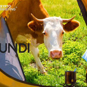 Pundi X Price Analysis NPXS / USD: Bulls On Holiday