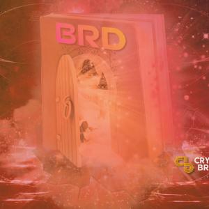 SBI-Backed BRD Wallet Opens Cheaper Crypto-Fiat Gateway