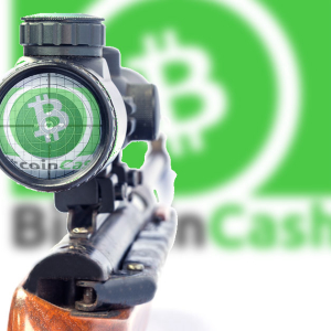 Roger Ver Stopped Mining Bitcoin Cash After Halving