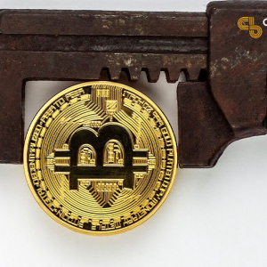 Can Bitcoin Preserve Wealth in an Era of Money Printing?