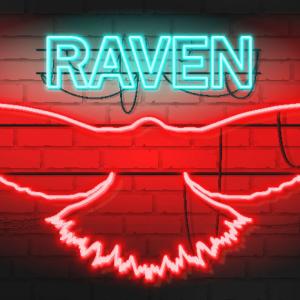 Ravencoin Price Analysis RVN / USD: Recharging