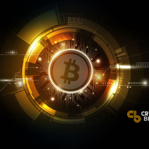 Why Bitcoin? Part 2: Bitcoin Versus Gold