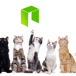 NEO Price Analysis NEO / USD: Looking Up