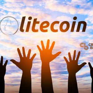 Volunteers Keep Litecoin Foundation Running, Director Says
