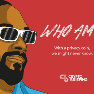 6 Crypto Coins That Could Prevent Government Snooping