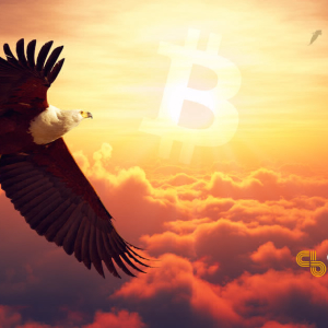 Incoming: Bitcoin Price Heads Toward $9,000 As Storm Breaks