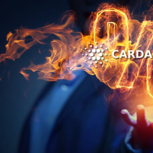 Cardano Staking: Everything You Need To Know About ADA Returns