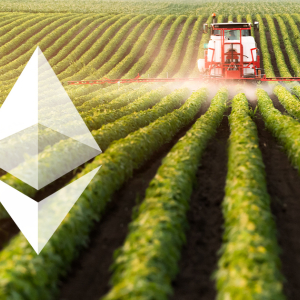 How Sustainable Is Ethereum's Agrarian Age?