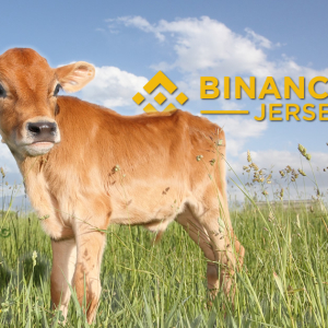 Binance Jersey Lightens The Brexit Mooed For UK Crypto Fans