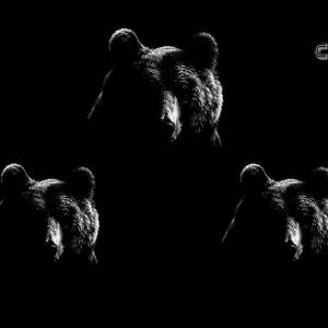 Basic Attention Token Price Analysis BAT / USD: Looming Bears