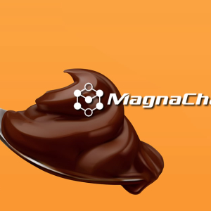 MagnaChain Code Review: Fork This For A Laugh