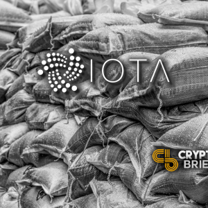 IOTA Co-Founder Threatens Legal Action, Embezzlement Accusations