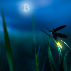 Lightning Bug Illuminates Trouble For Bitcoin Scaling