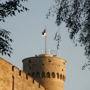Estonia's Government Has Issued Over 900 Crypto-related Licenses in Less Than One Year