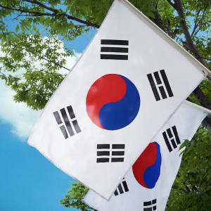 South Korea's Financial Regulator Reveals ICO Ban Will Be Maintained
