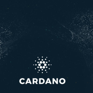 Cardano Will Outcompete Facebook's Libra in Emerging Markets. says Charles Hoskinson