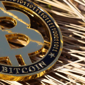 South Africa: Three Detained After Kidnappers Demand 15 Bitcoin Ransom to Free Teen
