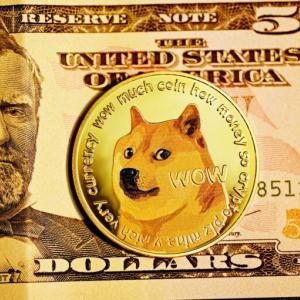 Famed Dogecoin Investors to Keep HODLing $DOGE After Losing Millionaire Status