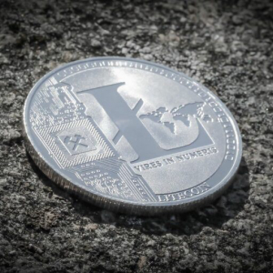 US Government's Auction of Seized Litecoin ($LTC) Ends Today