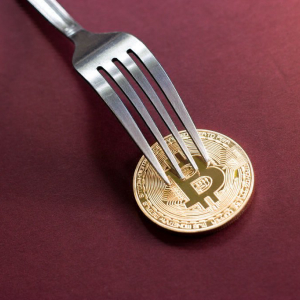 Here's What to Do if You Had Bitcoin Cash on Top Crypto Exchanges Before the Fork