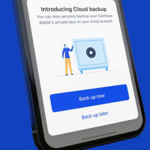 Coinbase Wallet: Cloud Keys Raise Questions About The Soul