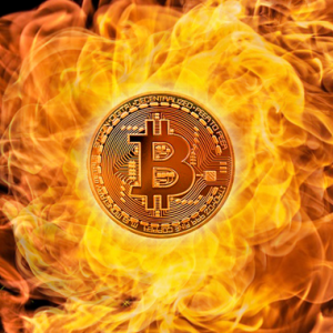 Burn Satoshi's Bitcoin, Suggests Paxful CEO in Thought Experiment