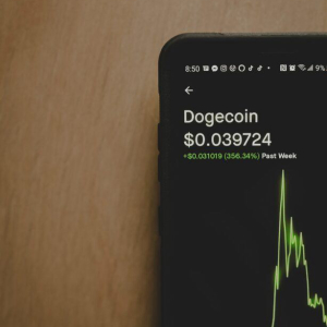Dogecoin Search Interest Exploded Ahead of $DOGE's 10,000% Price Rally