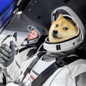 Dogecoin Gets Another Boost from Coinbase, Elon Musk