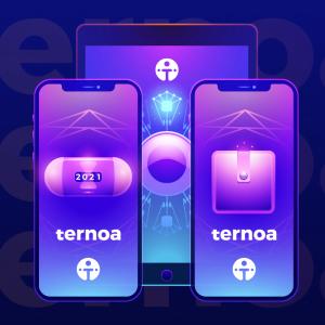 Ternoa Democratizes The Blockchain and Revolutionizes NFTs