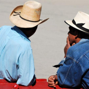 Bitcoin Salaries a No-go, Confirms El Salvador as Adoption Worries Rise