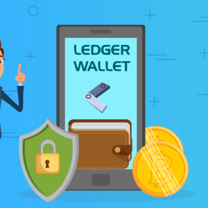 Ledger Wallet: A Reliable and Trusted Platform for Private Keys Storage