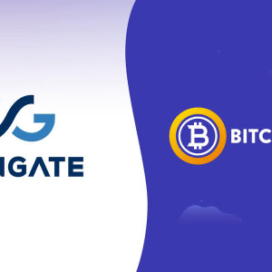 Get Payments in Bitcoin Gold (BTG) and Toss the EUR/ USD Conversion Worry to Automatic settling through CoinGate