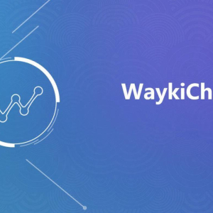 WaykiChain(WICC) Stablecoin: The New Payment Revolution