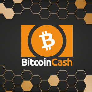 Bitcoin Cash (BCH) Approaches Key Support Levels; Declines by More Than 9%