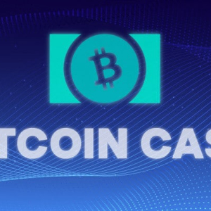Bitcoin Cash Price Remains at $300 Despite 2% Devaluation