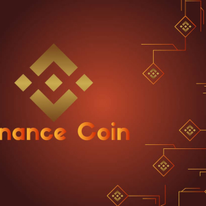 3 Times the Value within 3 Months, Binance Coin BNB Emerges to be the Hottest Coin in the Market