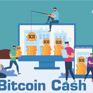 Bitcoin Cash (BCH) Marks of 6% Drop Since the Last Week