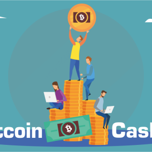 Bitcoin Cash Price Analysis: BCH Maintains the Bullish Run, the Same Trend to Continue for few more Days.