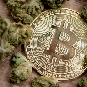 Bitcoin and Pot Stocks: The Two Most Profitable Assets of 2019