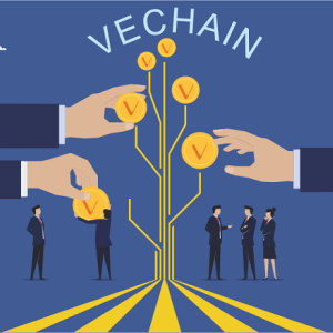 VeChain Price Movement Reflects 9% Intraday Loss