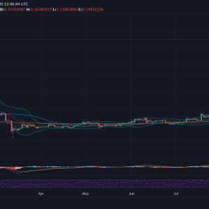 NEM Gains Massively and Holds Complete Support from Daily MAs