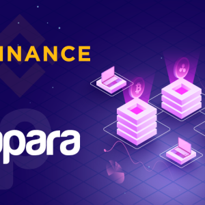 Binance Partners With Papara Wallet to Launch TRY Fiat-to-crypto Gateway