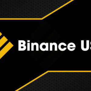 Binance USD Trades at $1.00 with Strong Support at $0.99