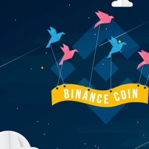 Binance Coin (BNB) Loses the Bullish Shine