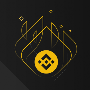 Binance Team is Giving Up All of Their BNB Allocations