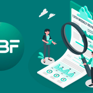 WBF Exchange Unveils 13th Weekly Review Report For Customers