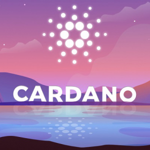Cardano Indicates a Moderate Upsurge in the Price